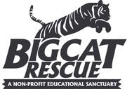 Big Cat Rescue.jpg