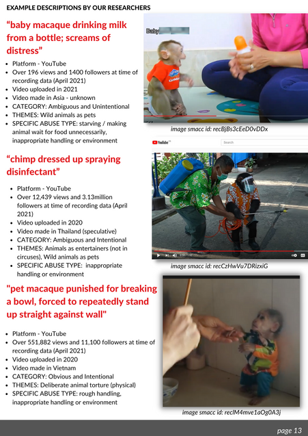 13 SMACC REPORT 2021.png