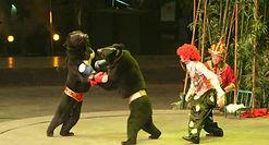 bear-clowns.jpg