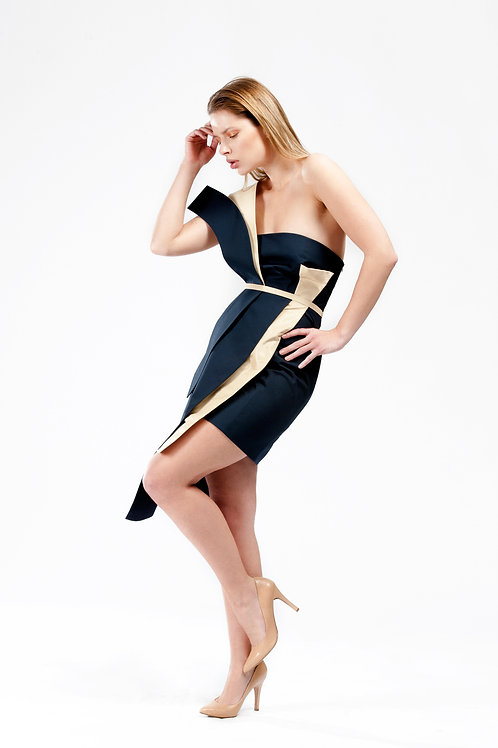 Navy Panelled Dress