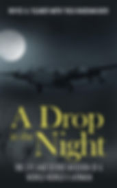 A Drop in the Night