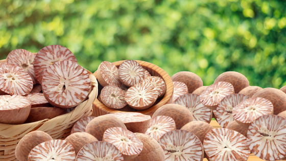 Getting to Know Betel Nuts