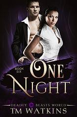 onenight_tmw_ebook.jpg