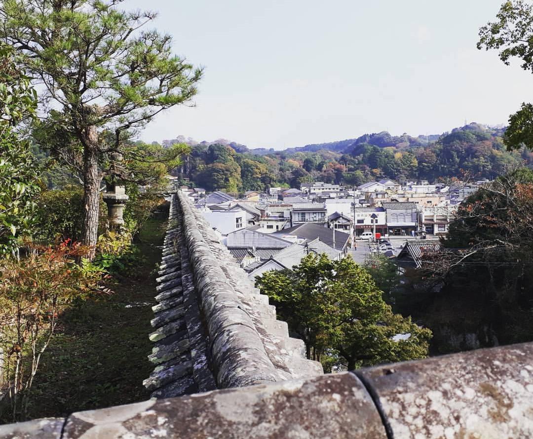 Japan streetview 2.jpg
