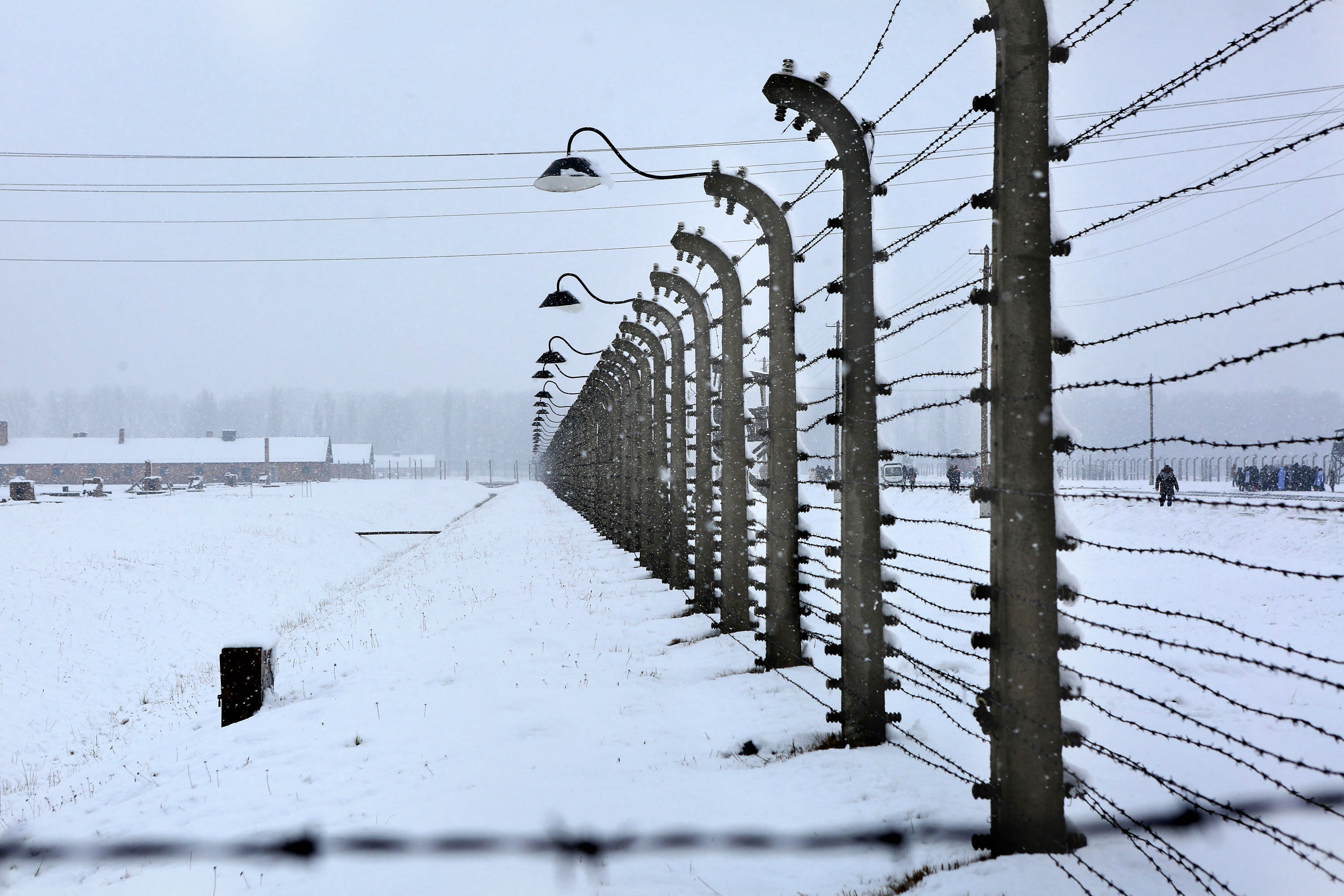 Auschwitz: the fraternity trip