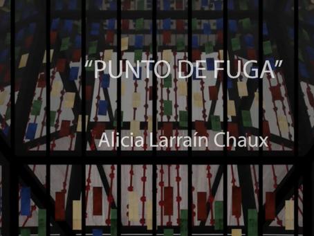 ¿Qué hay de la vida de Alicia Larraín Chaux?