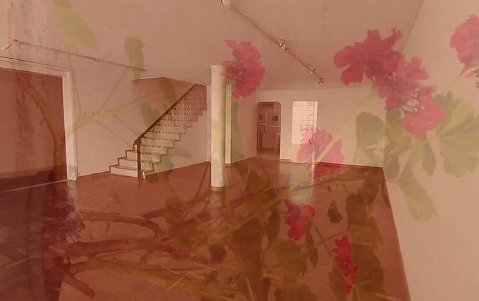Vida Silente / Beatriz Eugenia / Salón Comunal