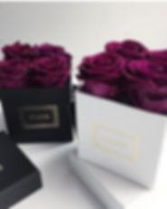 Mfleurs-La-Mignion-Flowers-Roses-Montrea