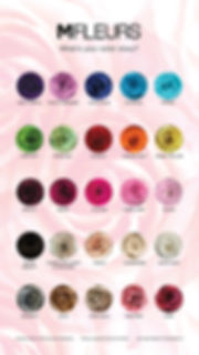 ROSE COLOR CHART.jpg