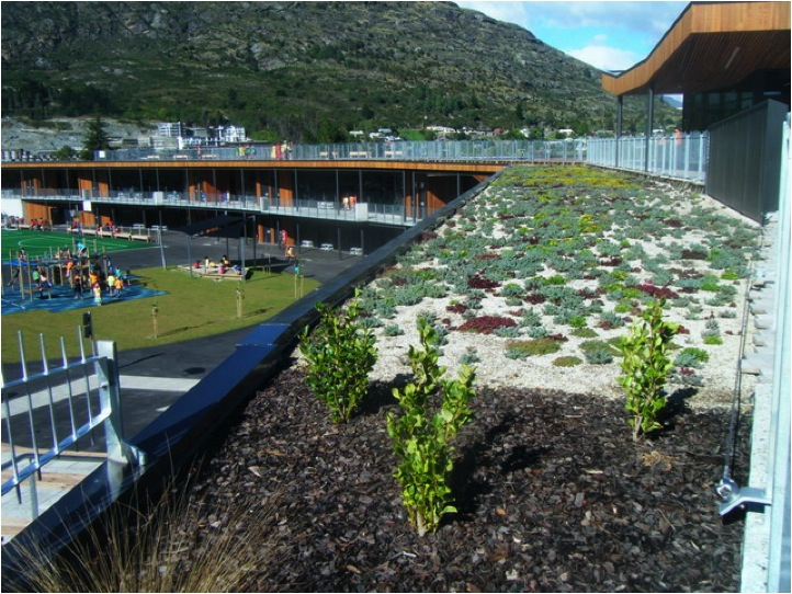 semi intensive and extensive greenroof