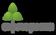 логотип Афлорика.png
