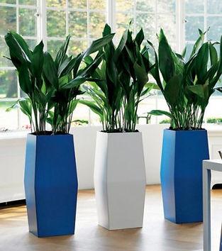 Кашпо для растений (2).jpg