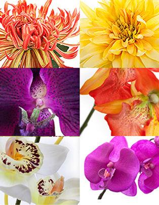 Искусственные цветы-1.jpg