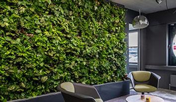 Стены из растений.jpg