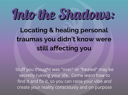 Into the Shadows Video Training