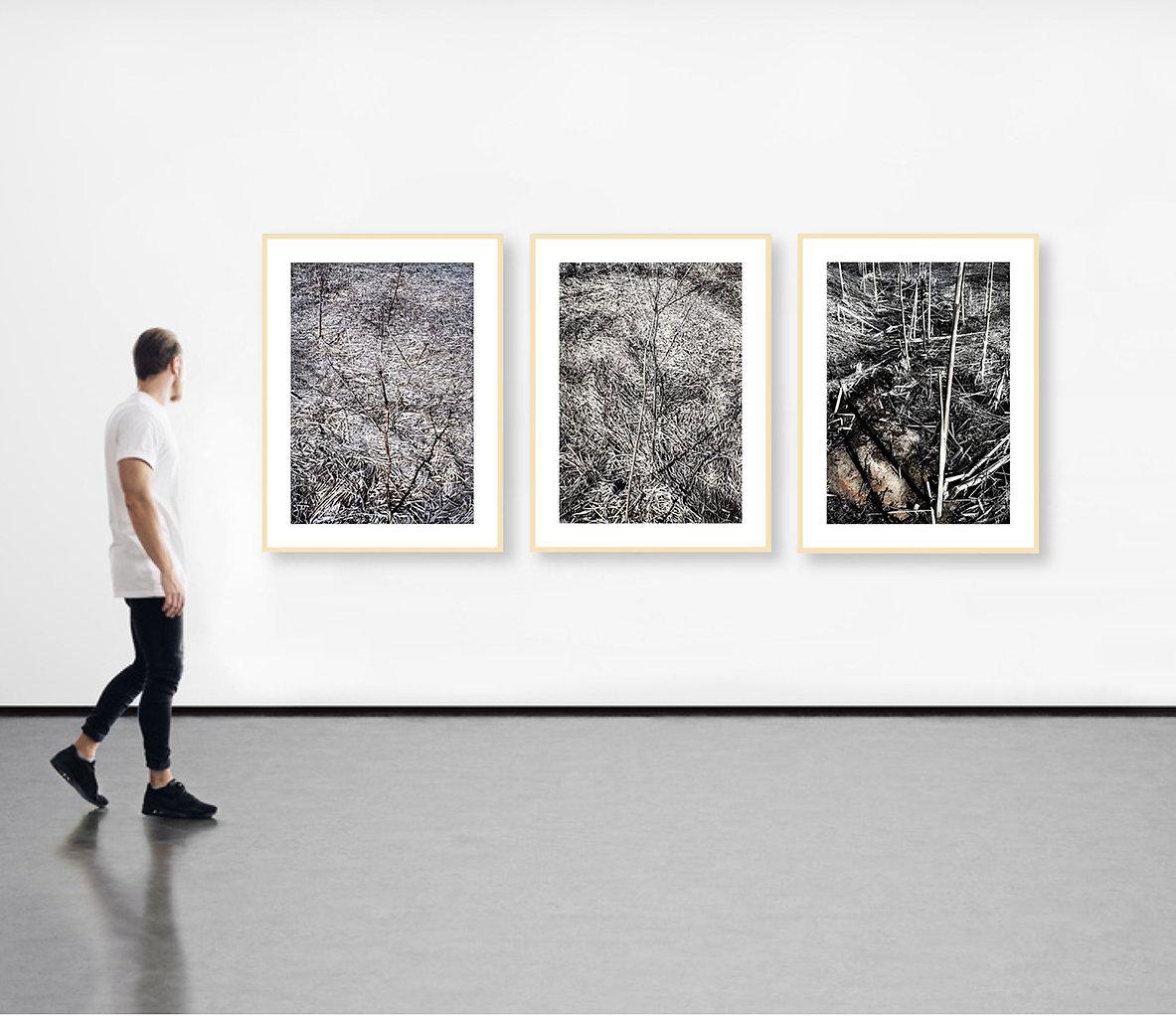 Galleriewand-web.jpg