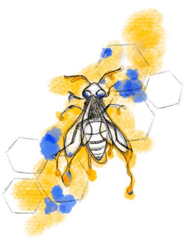 Zambia Bees