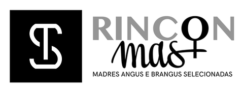 rincon mas.png