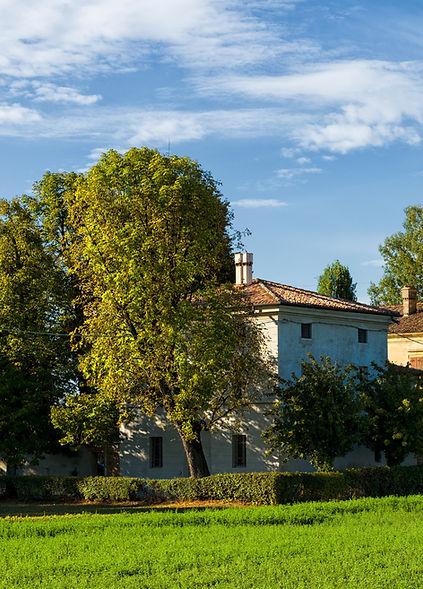 panoramica 5.jpg