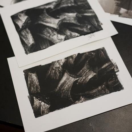 platinotype19_Sergio-Roberg.jpg