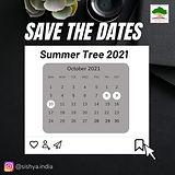 summer Tree Post.jpg