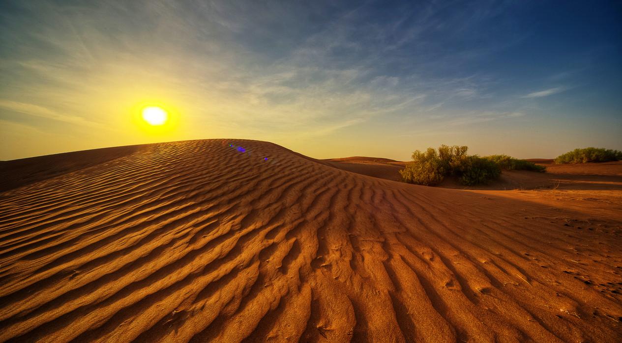 Al Bateen Landscape 3