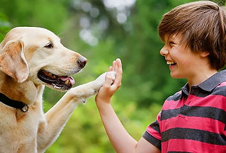 Dog and Kid five.jpg