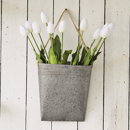 White Tulip Stems