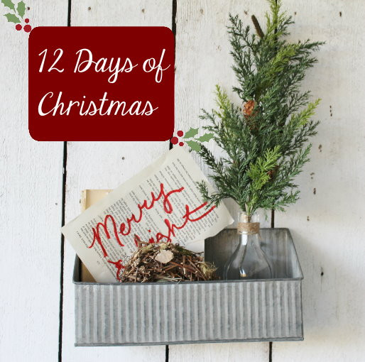 Twelve Days of DEALS!!