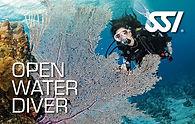 scuba lessons, gulf coast divers, tampa bay, SSI, advanced classes