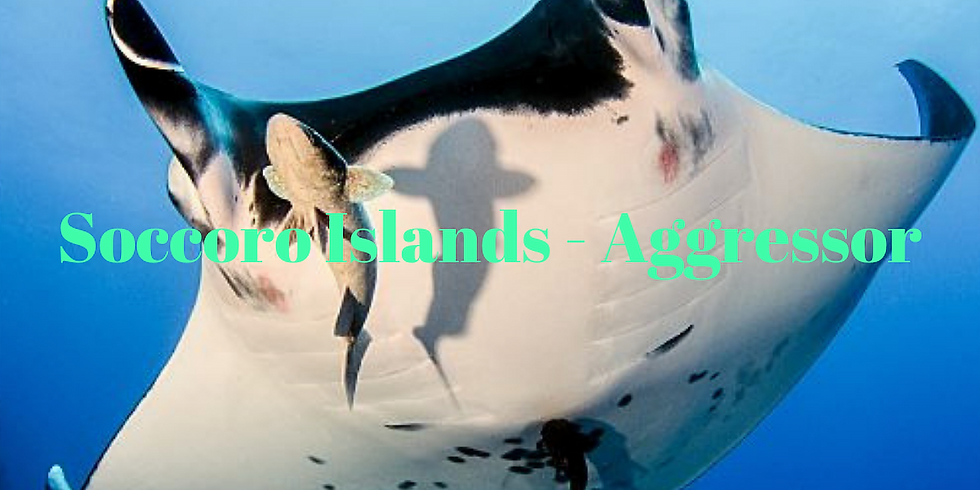 Socorro Island Liveaboard- Aggressor