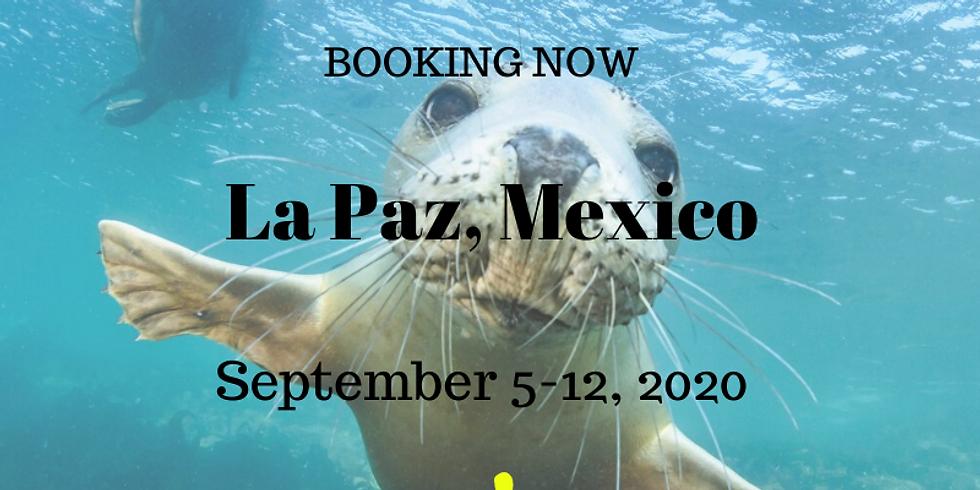 La Paz, Mexico    September 5-12, 2020