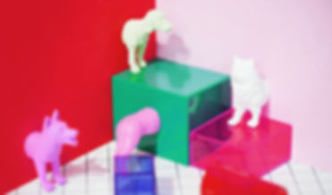 animals-background-boxes-1065709.jpg