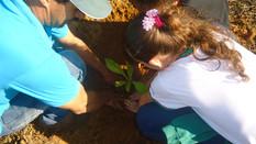 Projeto ECCO e Educação Ambiental nas escolas