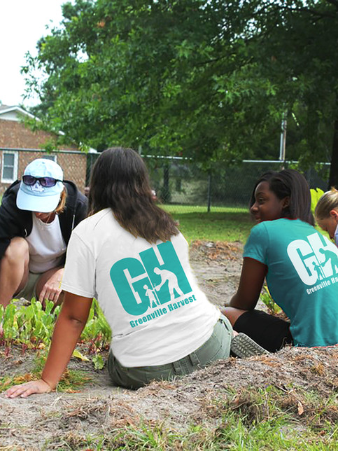 Greenville Harvest: brand identity