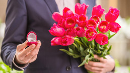 Courting Catastrophe: Tulip Mania and Diamond Mania