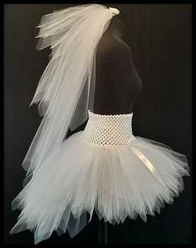 veil with skirt.jpg