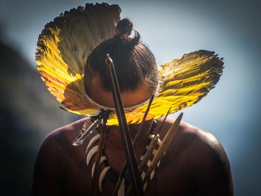 Os indígenas contra a Covid-19