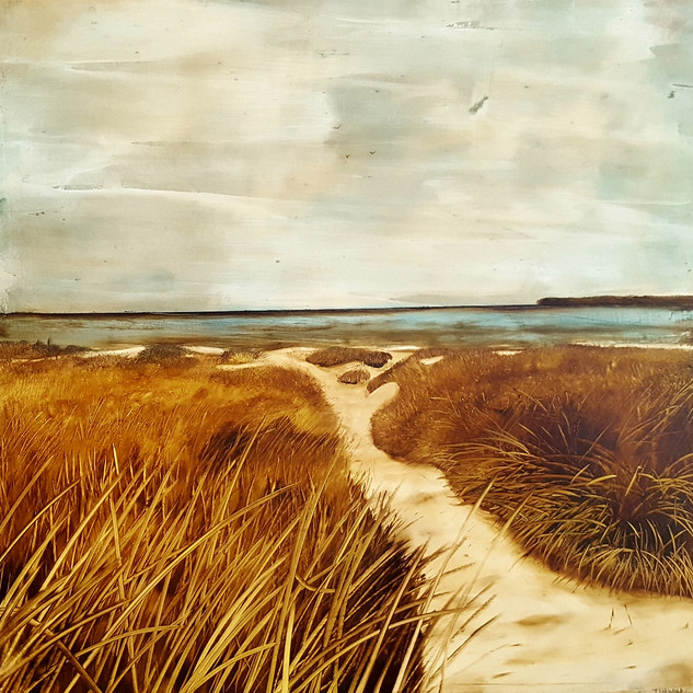 Sandy Path and Dunes