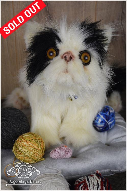 KittenMarcus