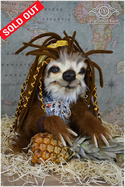 Sloth  Jose