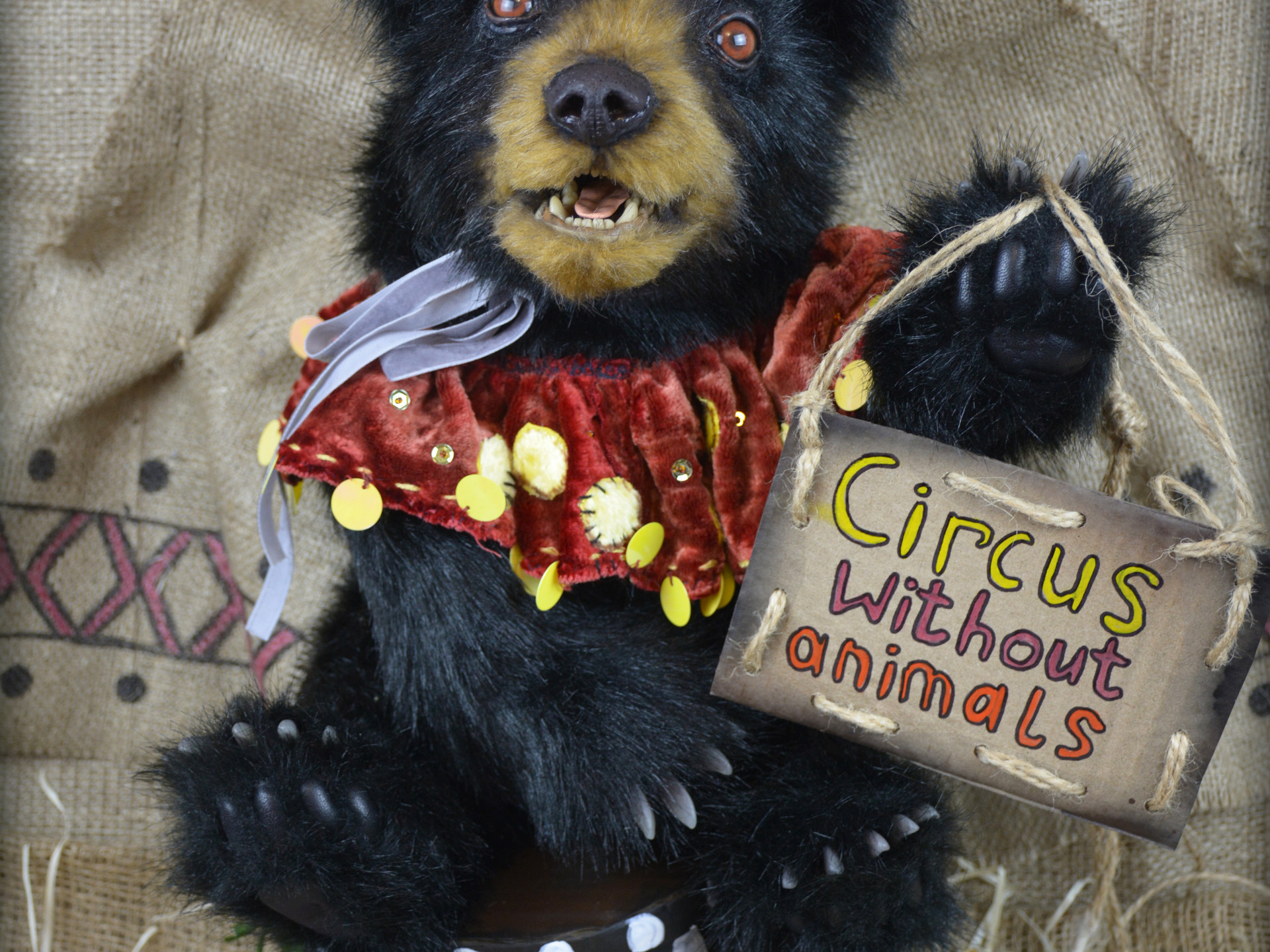Clown, black bear, bear, circus without animals, animals not clowns, animal protection, baribal