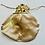 Thumbnail: GOLD DRAGONFLY