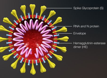 Aalto Bio Reagents Launches New Recombinant Eukaryotic SARS-CoV-2 S1-S2 Spike Proteins