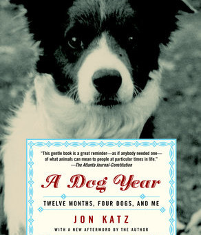 A Dog Year Review