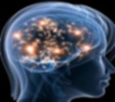 Brain-Function1-245x220.jpg