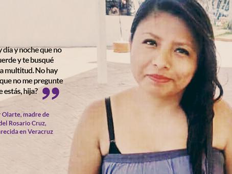 María desapareció en Veracruz. Ella se fue, dijo su pareja y huyó. Familia acusa: no lo investigaron
