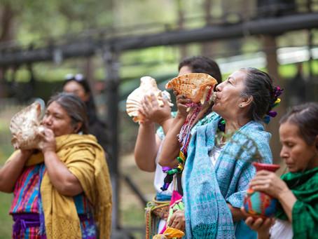 Los derechos de las mujeres deben ser una prioridad en la recuperación internacional