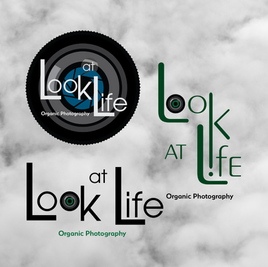 Look at Life Photography Logo Concepts.p