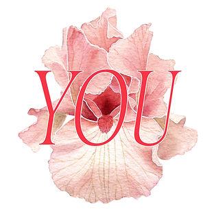 Irisesweb.jpg